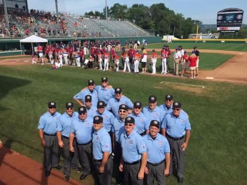 2014 Little League Baseball